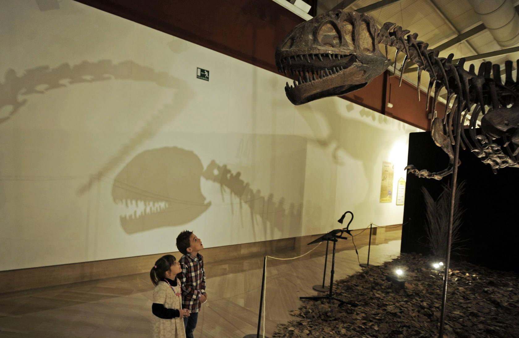 Inauguración 'Dinopetrea', una muestra sobre dinosaurios