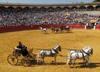 Exhibición de enganches en la plaza de toros de Lorca